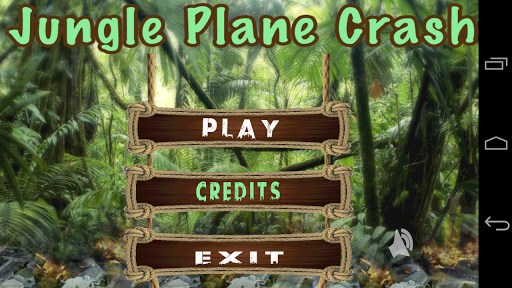 Jungle Plane Crash
