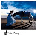 blue bay wedding logo