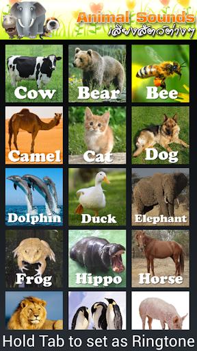 動物的叫聲寶寶