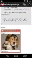 Screenshot of C++, Java Programs & Reference