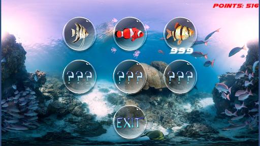 海水魚的冒險