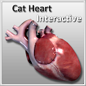 Cat Heart Interactive icon