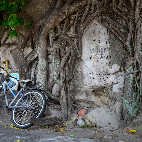 I want to bike by Musaab Sami Al-Obeidy - Transportation Bicycles (  )