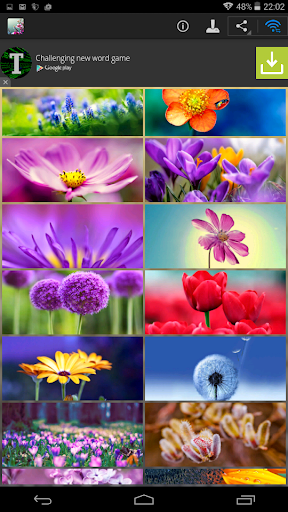 【免費個人化App】Flowers Wallpapers-APP點子