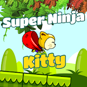 Super Ninja Kitty