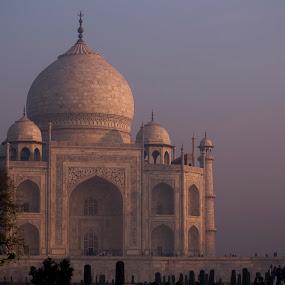 The TAJ MAHAL at Sunrise by Amitabh Mukherjee - Buildings & Architecture Statues & Monuments ( love, muslim, shah jahan, 7 wonder, incredible, colors, beautiful, taj mahal, india, sunrise, golden hue )