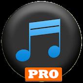 Simple Mp3 Downloader PRO