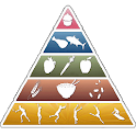 Nutritional Values Pro icon