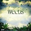 Weed HD wallpapers 2013 icon