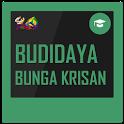 Budidaya Bunga Krisan icon