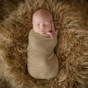 Mr. Alexander by Cortnee Stampone - Babies & Children Babies ( newborn photography, newborn, buffalo newborn photography )