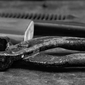 Still life of pliers by Renato Dibelčar - Black & White Macro ( macro, tools, metal, black and white, tongs, pliers, makro )