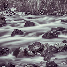 Winter Flow by Todd Ivanhoe - Landscapes Waterscapes