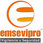 EMSEVIPRO icon