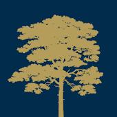 Windlesham Golf