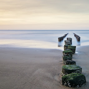 Fading into the Ocean by Dominic Schroeyers - Landscapes Beaches ( sky, sunset, sea, mussel bed, cadzand, beach, poles, netherlands,  )