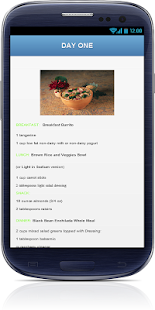 Vegetarian Diet Plan - screenshot thumbnail