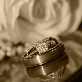 timeless by Jody Jedlicka - Wedding Details ( wedding photography, monochrome, details, wedding, rings,  )