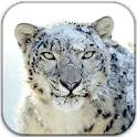 Mac(Snow Leopard) Icons logo