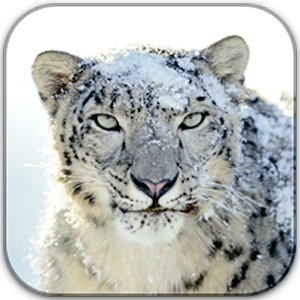 Mac(Snow Leopard) Icons
