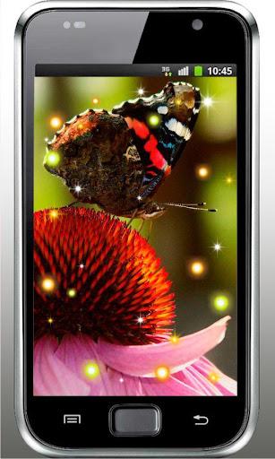 Summer Butterfly livewallpaper