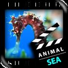 ベスト海の動物 icon