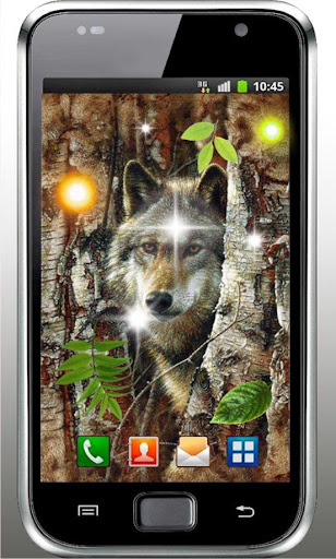 Wolf Forest HD live wallpaper
