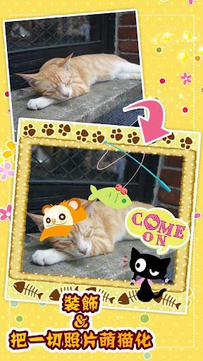 我的猫咪照片贴纸簿