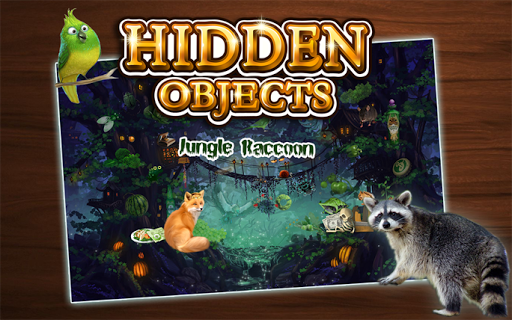 Hidden Object - Jungle Raccoon