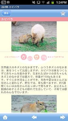 赤ちゃん動物図鑑100のおすすめ画像3