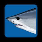 Release Mako icon