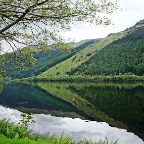 Loch Eck by Shona McQuilken - Landscapes Mountains & Hills ( water, scotland, hills, reflection, green, lake, loch,  )