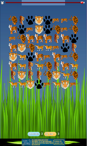 Tiger Game for Kids