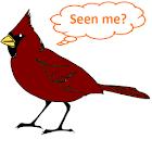 Bird Year 2018 icon