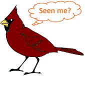 Bird Year 2015