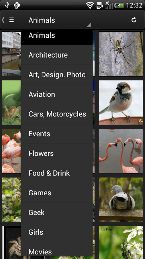 Phereo 3D Photo - screenshot