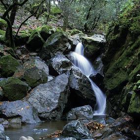 Sugarloaf Ridge Waterfall by Ken Miller - Landscapes Waterscapes ( waterscape, sugarloaf ridge, california, waterfall, state park,  )