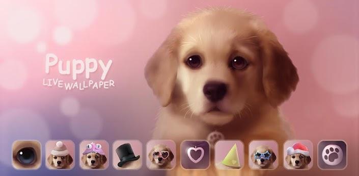Puppy apk