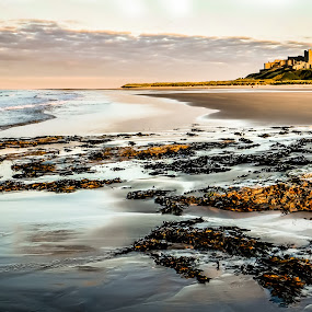 Bamburgh Tide by John Ash - Landscapes Beaches ( northumberland, seaweed, bamburgh, castle, beach, evening )