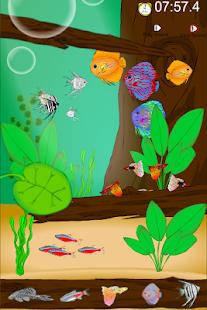 寻找隐藏的鱼