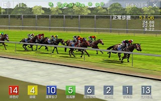 Screenshot of Race Simulator