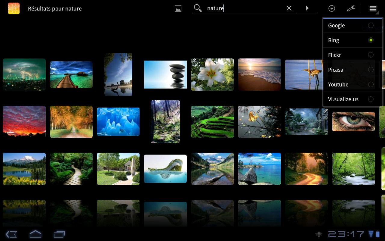 DroidIris+ : Image Search Screenshot 3