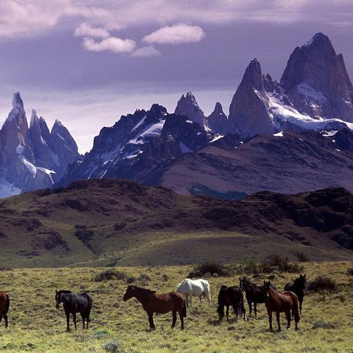 個人化必備App|Andes Mountains Live Wallpaper LOGO-綠色工廠好玩App