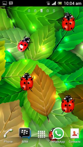 Ladybug Garden LWP
