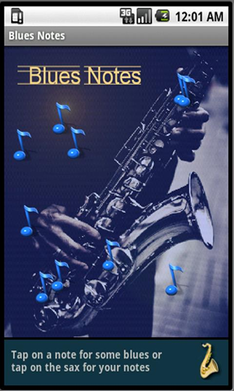 Blues Notes Pro - screenshot