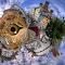 IMGP5142_3_4_tonemapped1e.jpg