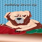 Bulldog Dress Up icon