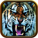 3D Tigers Real Water HD icon