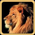 Fun Learn - Animals icon