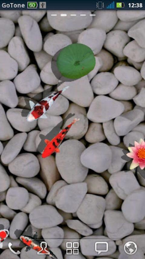 3D Koi Pond Reality Live Wallp - screenshot